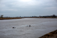 7-Severn Bore - Epney - 22nd Mar 2019-679A9939