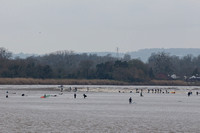 15-Severn Bore - Epney - 22nd Mar 2019-_MG_0976-Edit